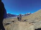 Nepal 2015 - From here the journey to the top of the world really begins<div style='float: right;'>[2015:10:08 14:26:26] [2015NEPAL-20151008-01252.jpg]</div>